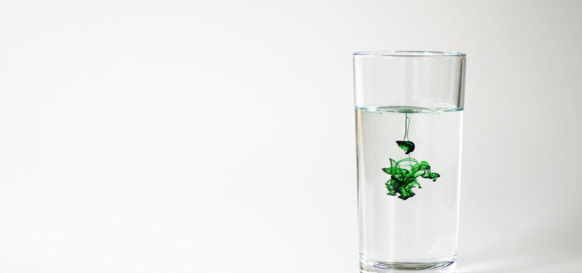 chlorophyll water